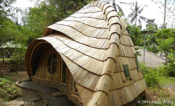 Green School is home to some wonderfully organic shapes all made from ...