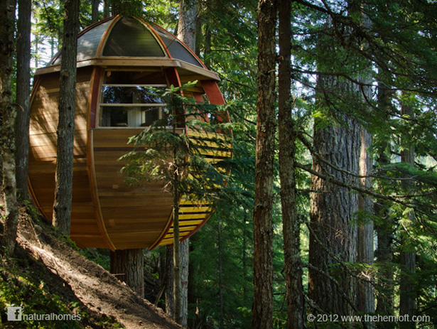 ... some preliminary treehouse research Joel decided he didn\u0027t like the clunky under-structures of most treehouses but rather wanted something more elegant. & HemLoft a Canadian Treehouse
