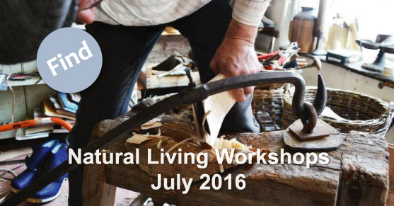 Sustainable Living Workshops: July 2016