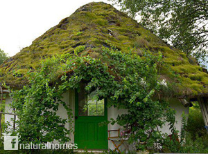 http://www.naturalhomes.org/usa-naturalhomes.htm
